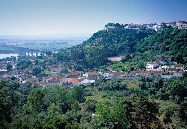 Wines of Tejo International Wine Challenge Results